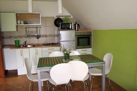 Apartam Kanin - Bovec - 公寓