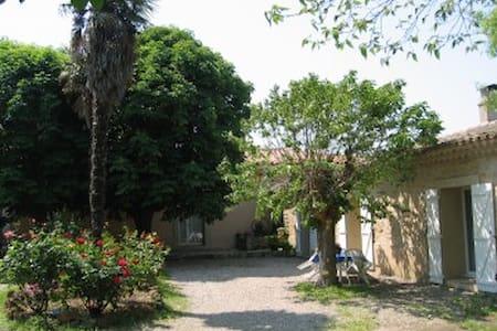 Maison dans domaine viticole