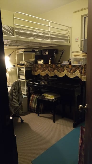 Private Room with Loft Bed (Current room setting)