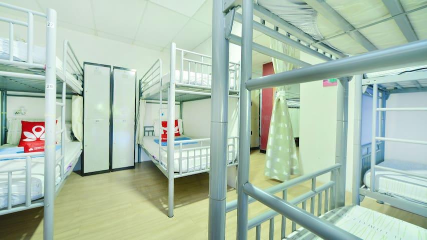 10 bed mixed dorm, lockers