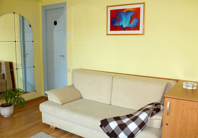 Rent a flat in the 9th district! - Budapeşte - Daire