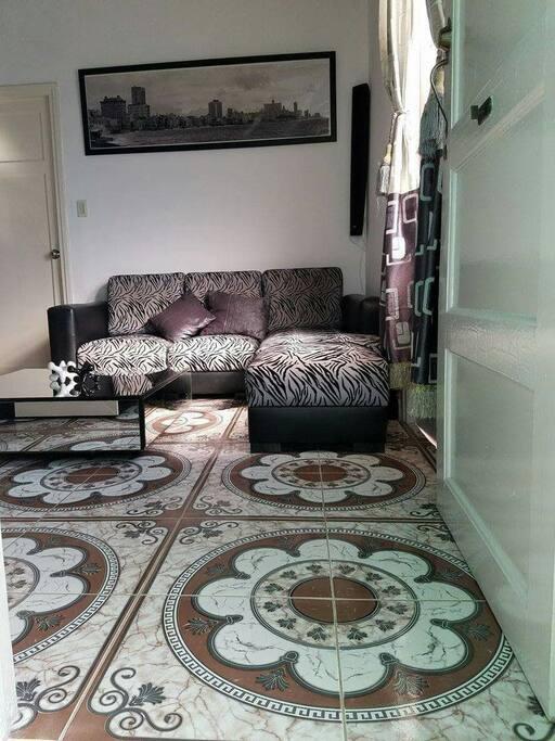 »The living room, what you first see when you walk in. »La sala, lo primero que verá al entrar.