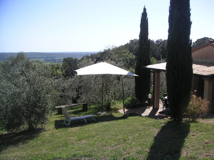 Casa Belvedere -tranquillità tra bosco e ulivi-