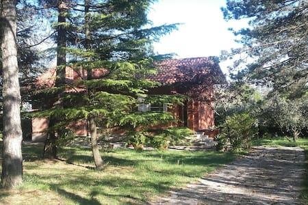 Villa with garden and sea view - Beato Sante Mombaroccio, PU