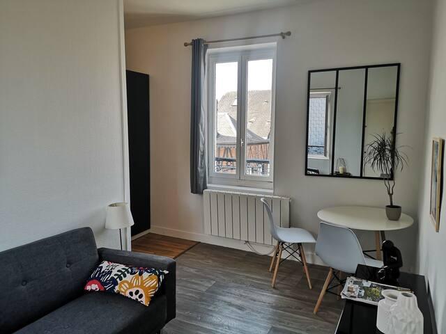 Rouen hyper centre studio lumineux avec TV