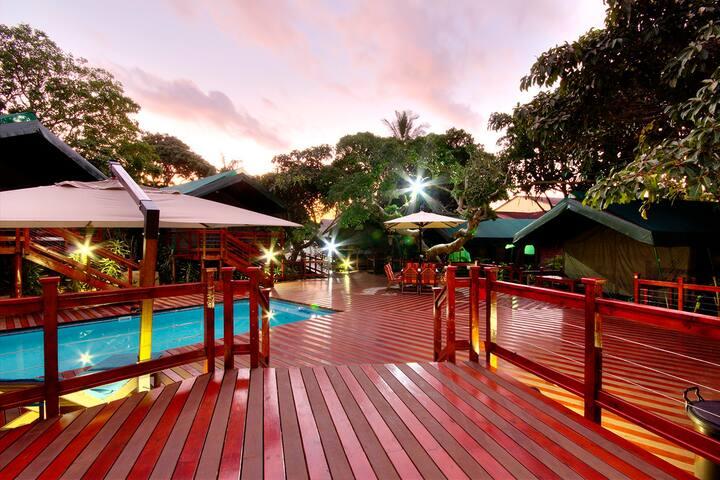 Luxury en-suite tent in town - Saint Lucia - Namiot