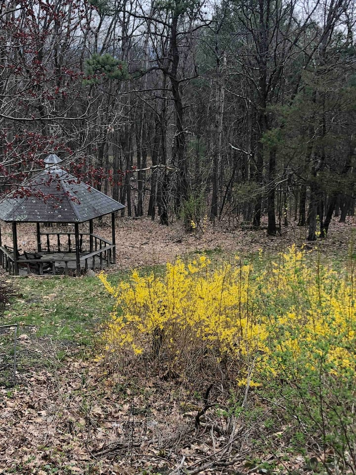 Peaceful Mountain Home in Catskill