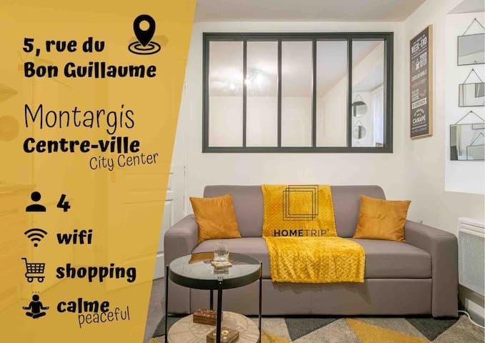 Appartment cosy au cœur de Montargis - city center