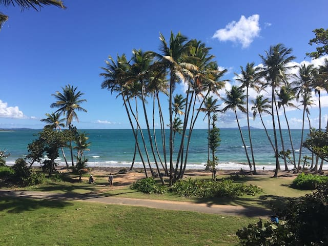 Beach front access