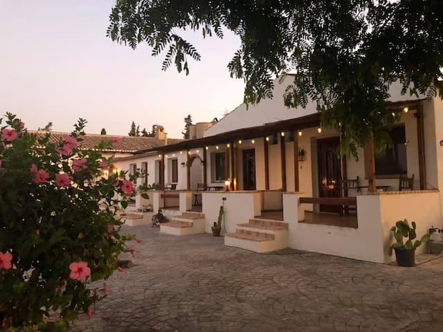 The Hidden Paradise1 Finca  Santa  Ana Mini Resort