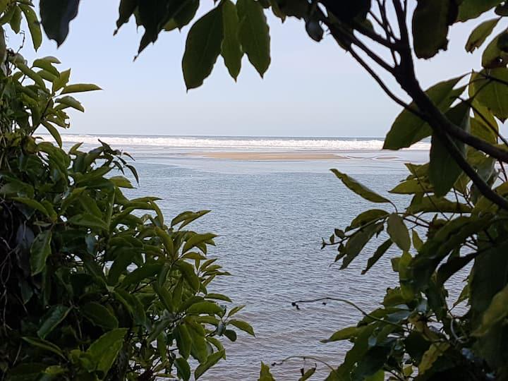 Bodhi's Reef