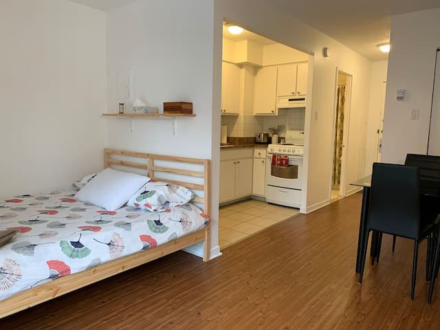 Le petit appartement Plateau-Mont-Royal cozy&comfy
