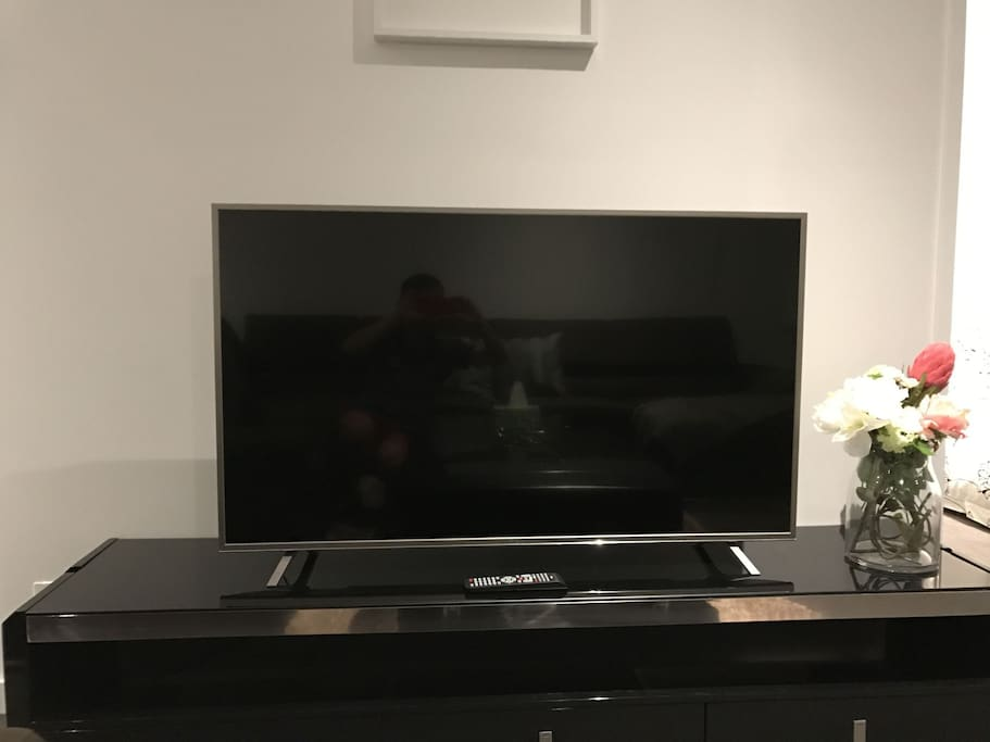 55' Inch Smart TV (Netflix available)
