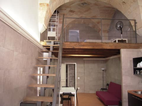 Lovely and bright studio with loft