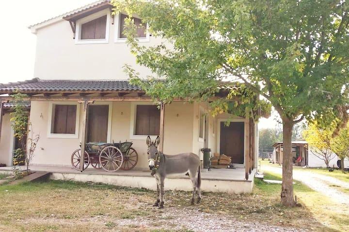 Το σπίτι στο αγρόκτημα!