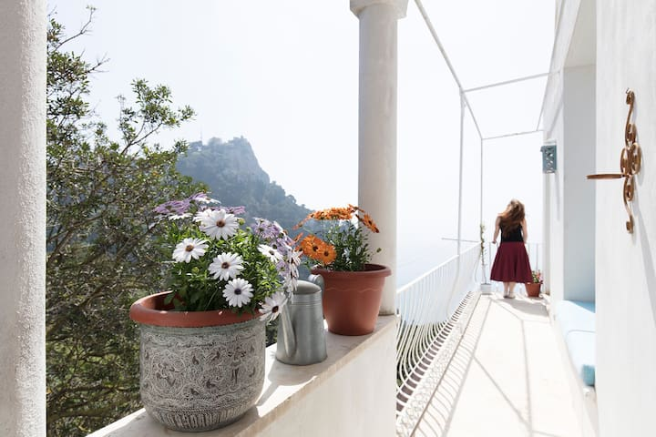 The terrace and the stunning view