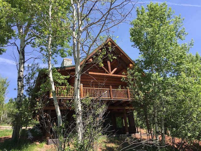 COZY CABIN NEAR RIVER AND RESERVOIR,SPRING SPECIAL - Basalt - Chalet