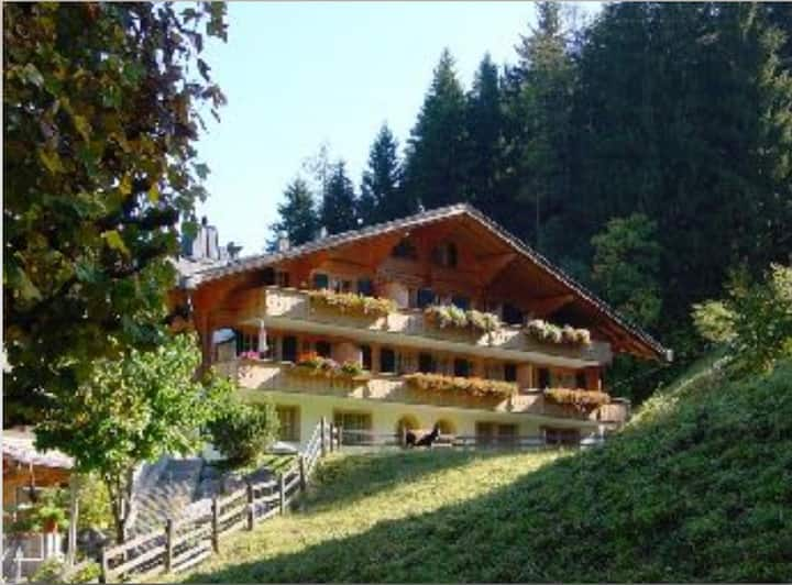 Ideally located two bedroom apartment in Gstaad