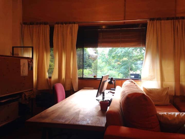 Spacieux et ensoleillé appartement en  Villa Morra