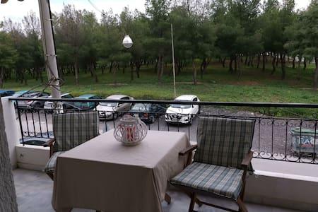 Giota's Home near iaso, mitera, ygeia, oaka