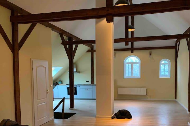 Gut Aspern Polo Club (neue Wohnung)