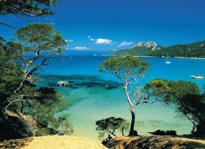 Beautiful Provencal villa near the sea