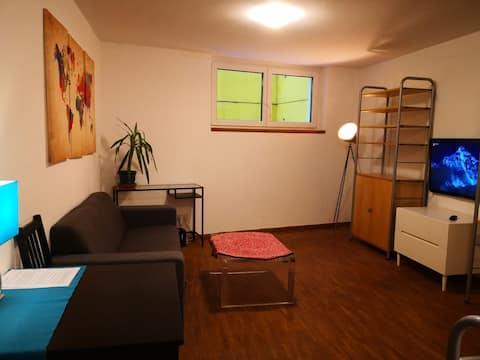 udoban i moderan budžetski studio u podrumu