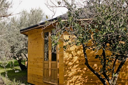Wooden Yurt Spain - eco home in olive garden