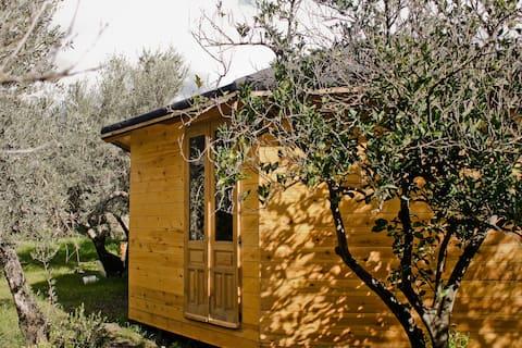 Wooden Yurt Spain - Casa ecologica de madera