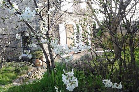 Parc du Luberon gite independant - Cabrières-d'Aigues
