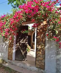 Aravali House - Rural Retreat in the Rose Gardens - Pushkar - 小平房