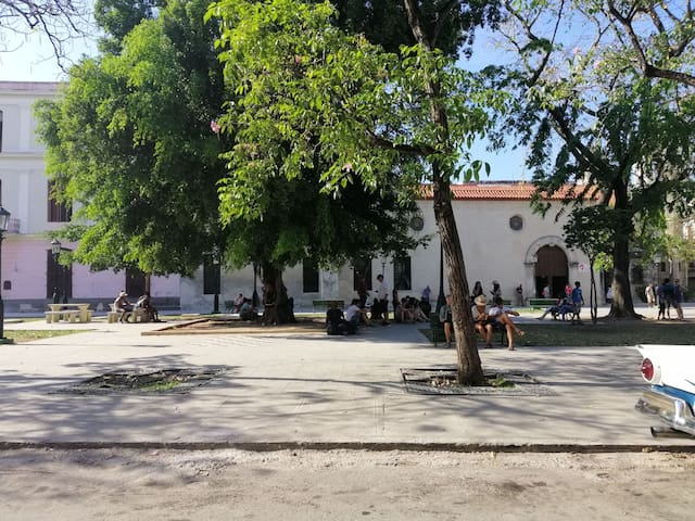 Cristo Habana