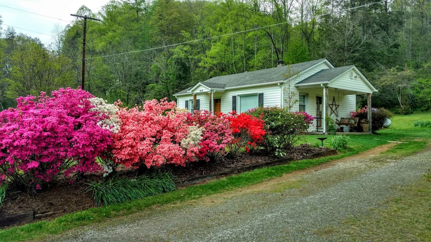 Pisgah National Forest area home, cozy and quiet - Old Fort - Casa