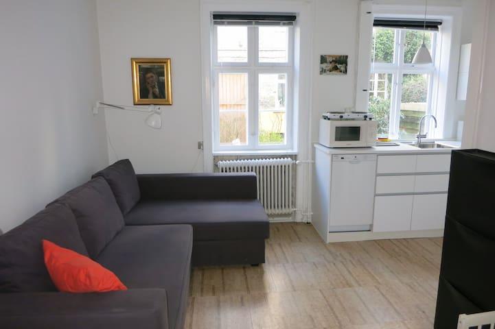 Cozy appartment in the center of Copenhagen - København - House