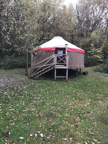 Fox Tor - Large village Yurt 05 - Newton Abbot - Iurta