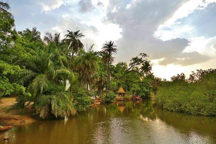 AbCa's Creek Lodge in The Gambia