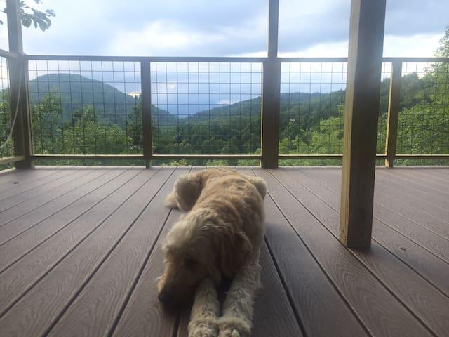 Sunshine, fresh air Glamping Deck near Asheville.