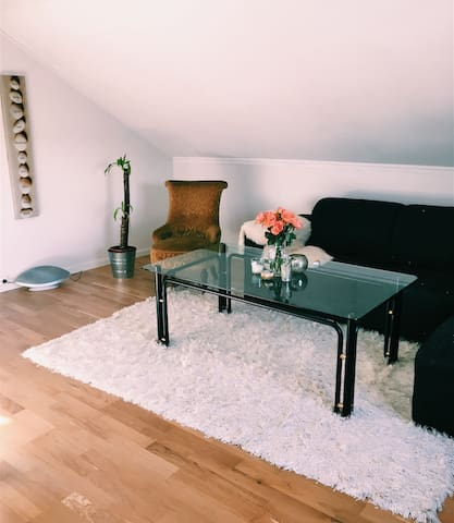 Spacious apartment in Lillehammer city centre - Lillehammer - บ้าน