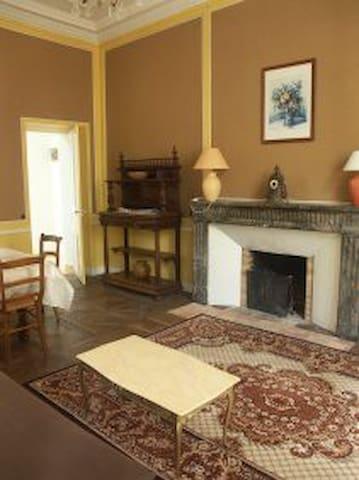 """Salon-séjour dans le """"jus"""" de la demeure ( Plafond 3m50, cheminee fonctionnelle, plancher )"""