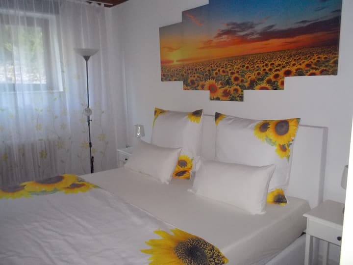 Studio Sunflower-Fully equipped, quiet,clean,chic