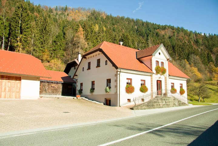 Farm Stay Bukovje near Logarska Valley