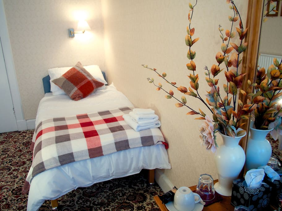 Beautiful twin room, two minute walk from the city centre.