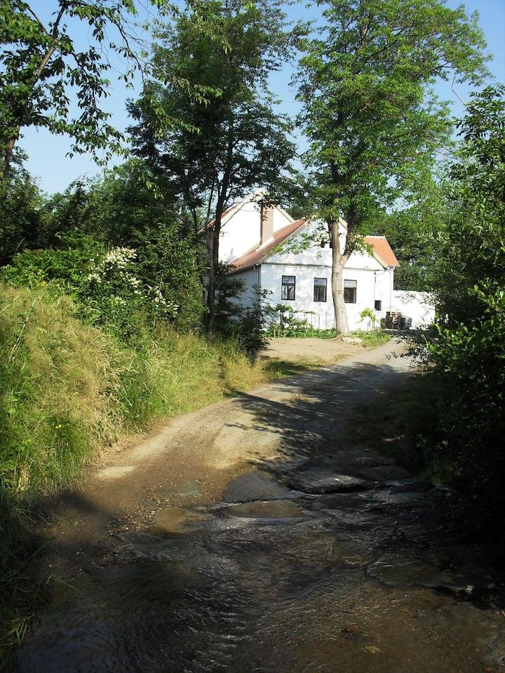 Schöne alte Mühle, wunderschöne Lage Kaisersdorf