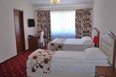 Hostel Paltinis - Hunedoara - 旅舍