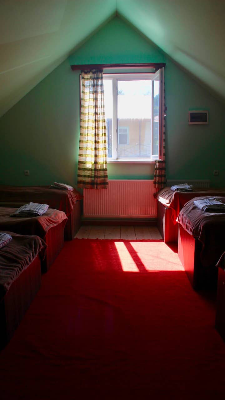 Green Hostel (8 beds)