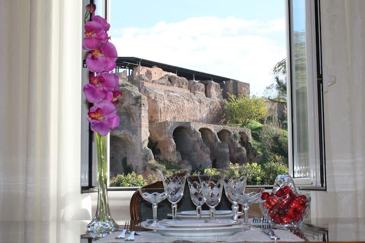 Apartment Domus al Palatino - Рим - Дом