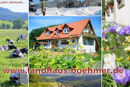 Landhaus Böhmer Zittauer Gebirge - Waltersdorf - Appartamento