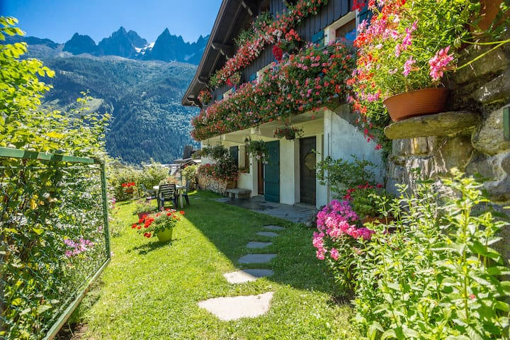 Brévent apartment / 3min from the center - Chamonix - Wohnung