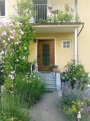 Unser Eingang...der von der Wohnung ist leider noch nicht so begrünt..
