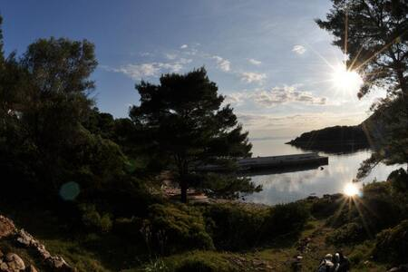Adriatic Adventures (island Mrcara) - Uble - 섬